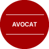 avocat on